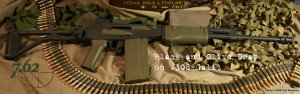 IMI .308 Galil and 20 Round Magazine OD/Black