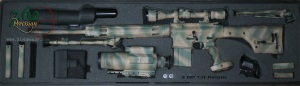 AR-10 Sniper Rifle in Case