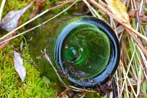 Bottle in the Moss