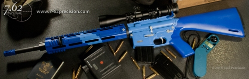 Blue Two-tone AR-15 Fern New Zealand