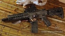CMMG-300-BLK-Hog-SBR
