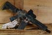 Hog-Hunting-SBR-AR-15-300-BLK